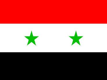 Сирийский долгожитель оставил после себя почти 200 потомков