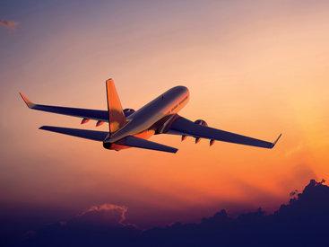 33-летняя француженка скончалась на борту самолета
