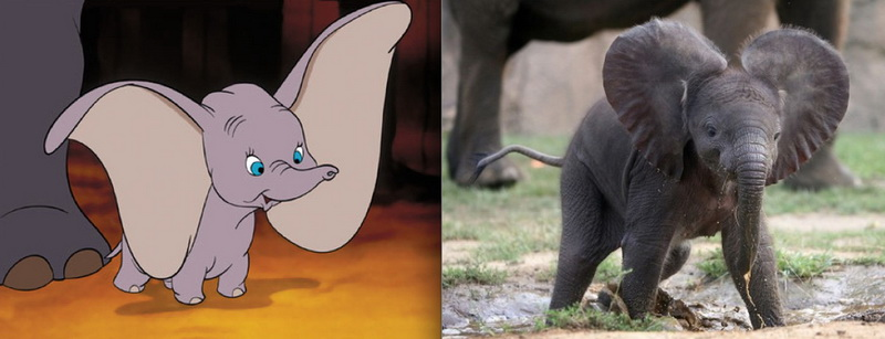 Famous animal cartoon characters