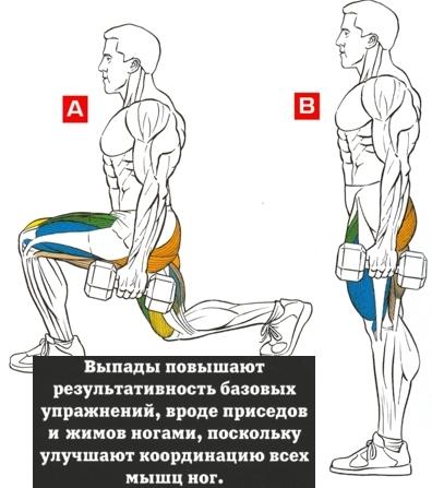 Упражнения для ног с гантелями для мужчин