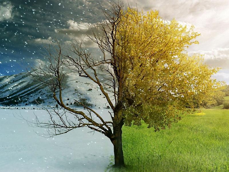 В Азербайджане изменится продолжительность лета и зимы