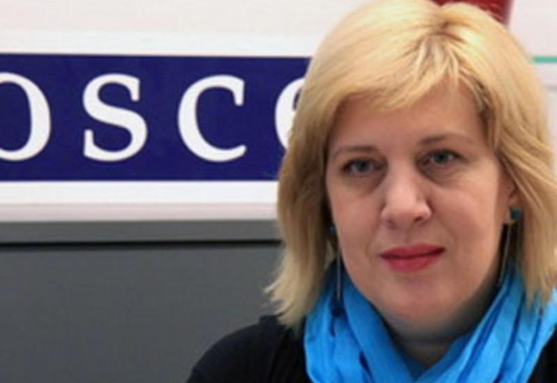 Дунья Миятович осудила нападение на журналистов в Нардаране