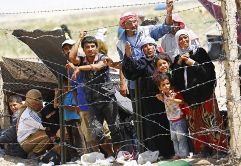 Техас сжалился над сирийскими беженцами
