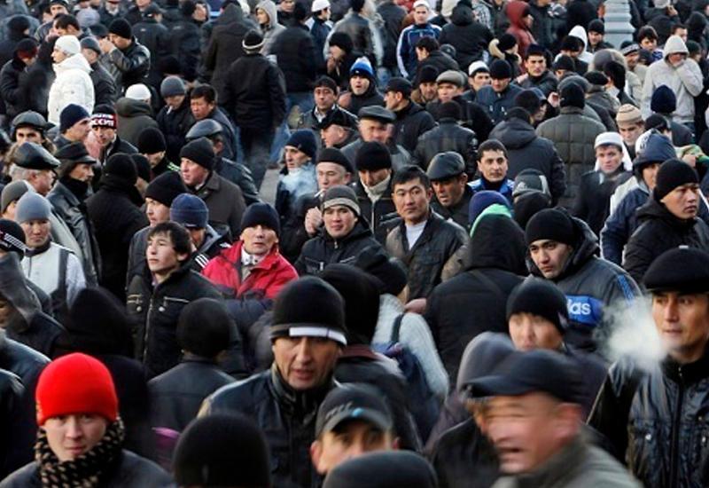 Мигранты попытались прорваться в Евротоннель