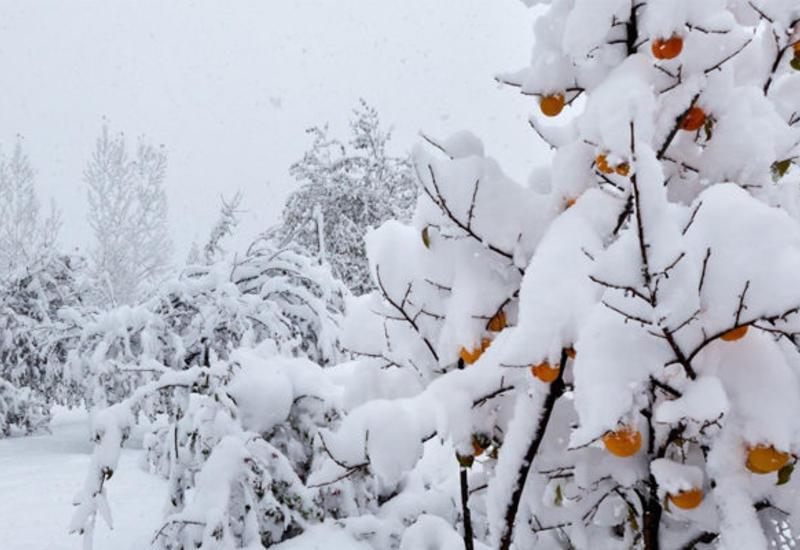 Гах - самый снежный район Азербайджана
