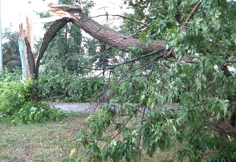 Посмотрите, что натворил ураган в Баку
