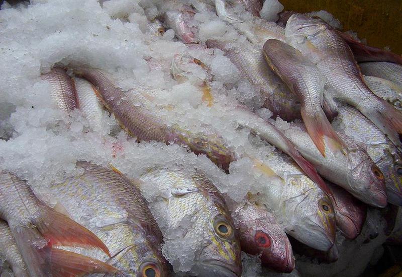 В Баку продают воду по цене рыбы