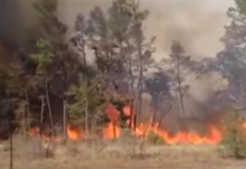 Огонь сожрал десятки домов