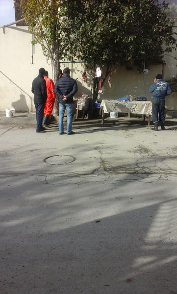 Опасное мясо в Баку