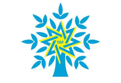 Назначен полномочный представитель правящей партии на президентских выборах в Азербайджане