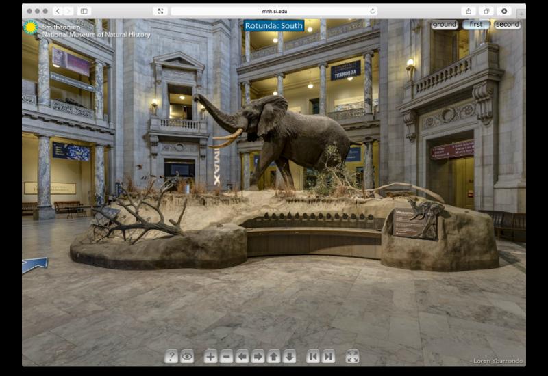 Гид по самым интересным виртуальным музеям
