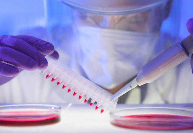 В США планируют ускорить вакцинацию от коронавируса до 1 млн доз в день
