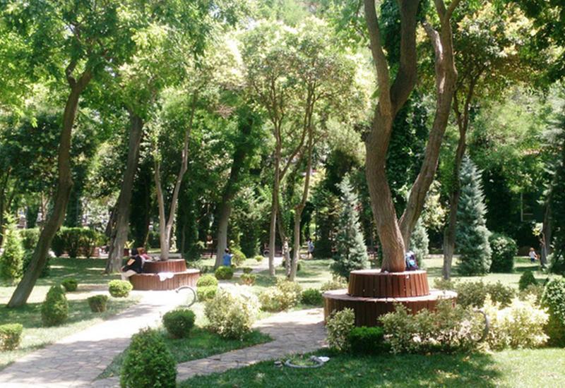 Один день в настоящем бакинском оазисе