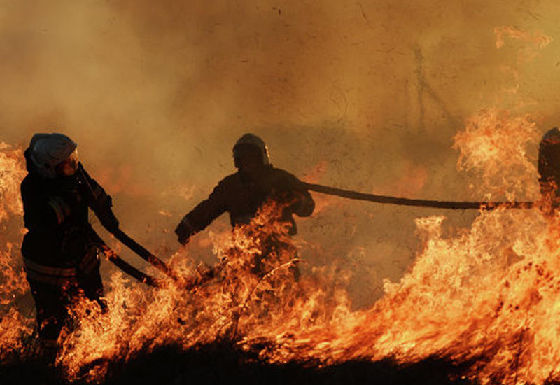 Пожар в Шамкире, есть погибший