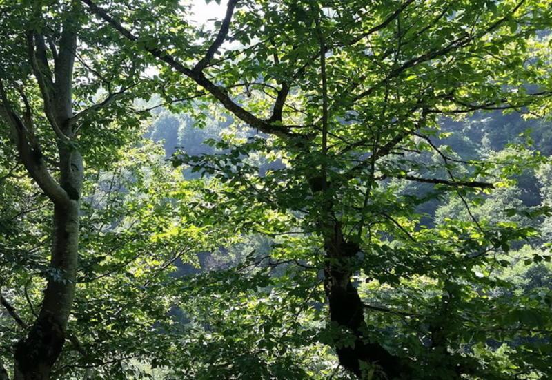 Вспоминая о лете: невероятные пейзажи Загаталы