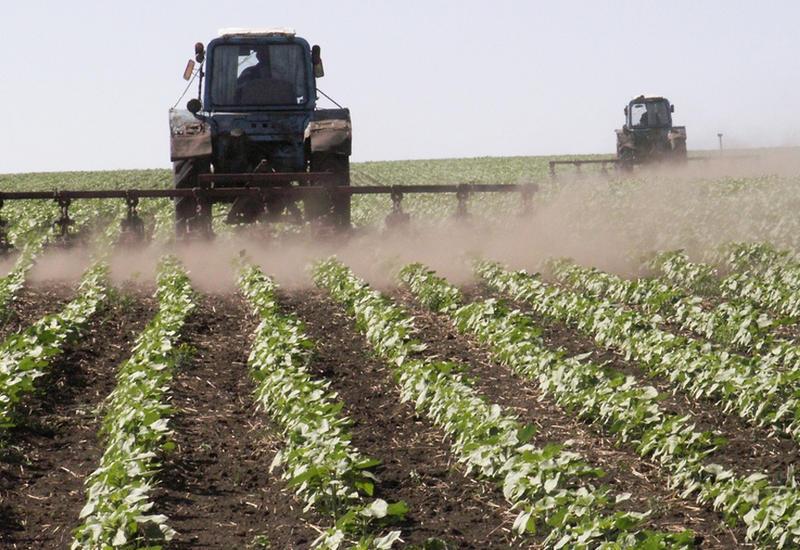 Фермеры с нетерпением ждут возвращения в Карабах