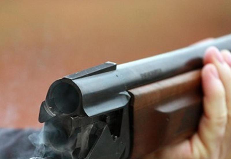 В США брат застрелил сестру во время онлайн-урока в Zoom