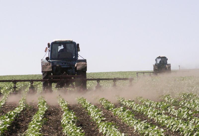 В Азербайджане применят турецкую модель агрострахования