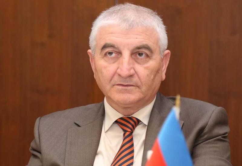 Мазахир Панахов: Референдум в Азербайджане был организован на должном уровне