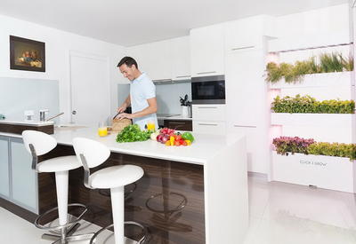"""Выращивание овощей и фруктов в домашних условиях <span class=""""color_red"""">- ФОТО</span>"""