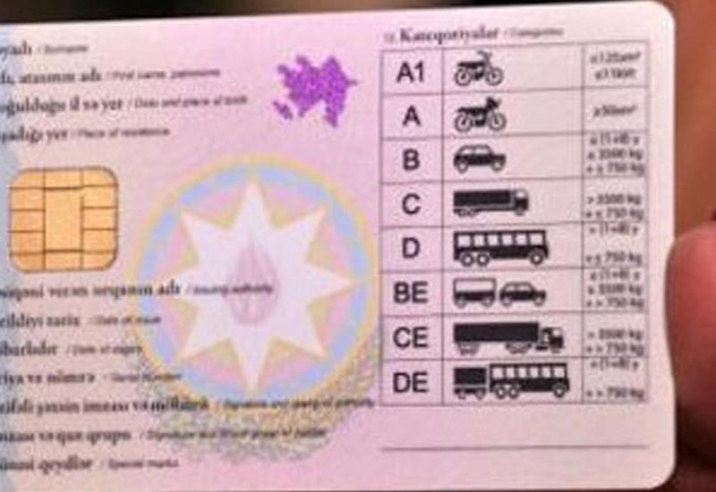 Удостоверения личности и водительские права могут объединить
