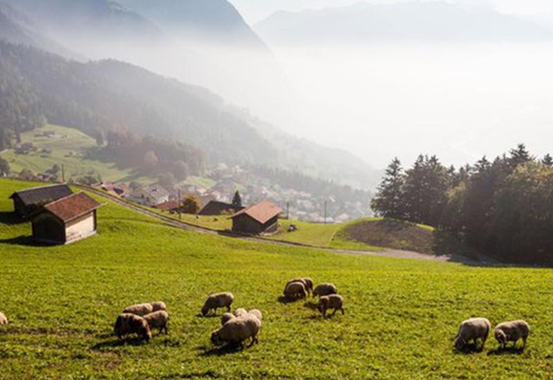 Невероятно красивые пейзажи княжества Лихтенштейн