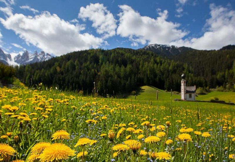 Величественная красота Альп, утопающих в зеленых лугах