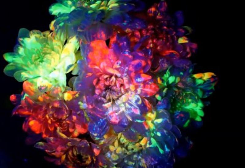 Как сделать светящиеся цветы к Новому году