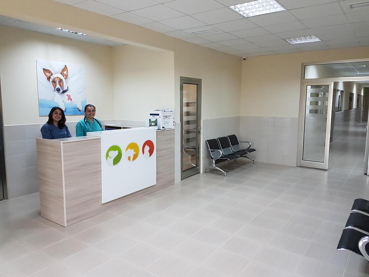 В Баку начал функционировать Центр спасения и приюта для бездомных животных
