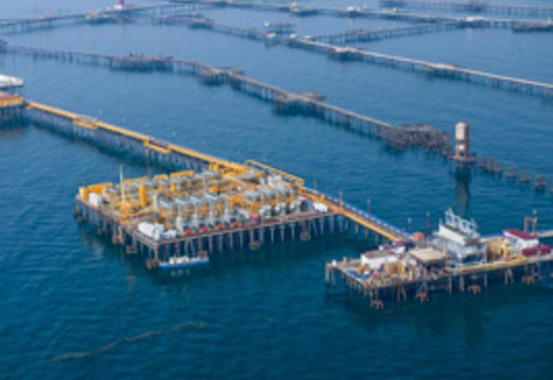 Французская компания и SOCAR очистят воды Каспия