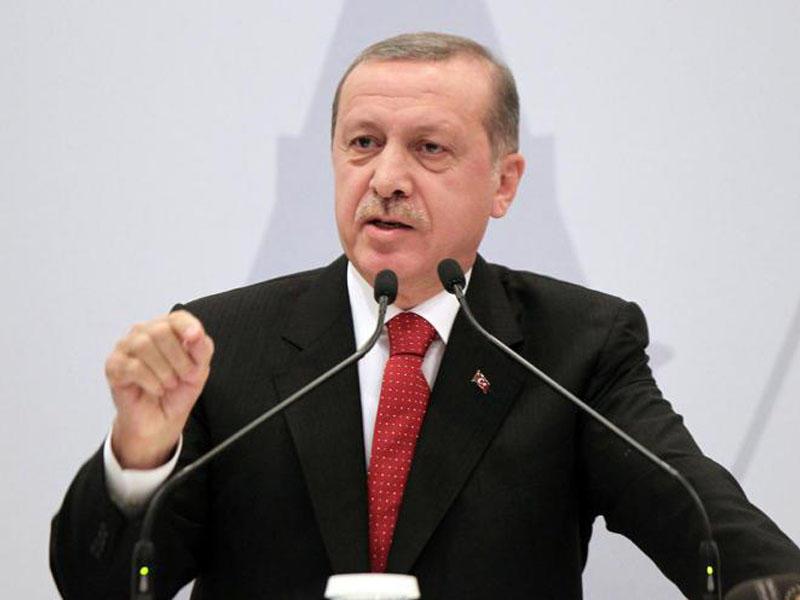 ВТурции сообщили  овозможности проведения новоиспеченной  турецкой операции вСирии