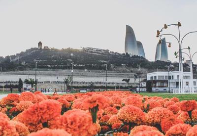 Портал The Cultural Trip о причинах посетить Азербайджан