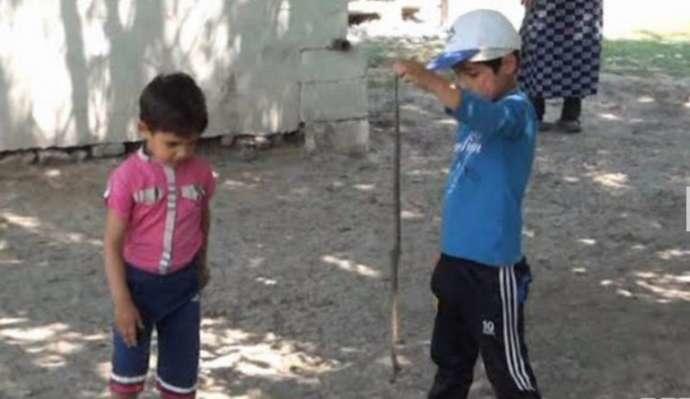В Сабирабаде змеи заползают в дома