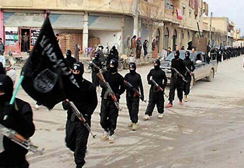 """Никто не убил больше террористов """"ИГ"""", чем Турция"""