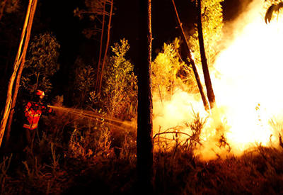 Страны ЕС помогут Португалии бороться с лесными пожарами