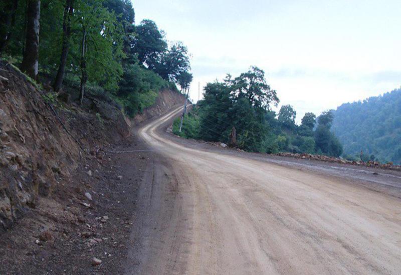 Заново прокладывается дорога через Гирканский национальный парк