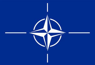 Грузия сможет войти в НАТО по упрощенной процедуре