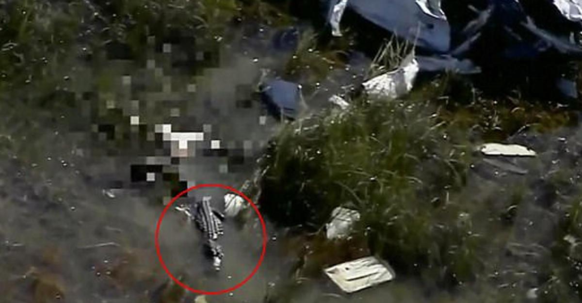 ВСША аллигатор съел упавшего вболото летчика