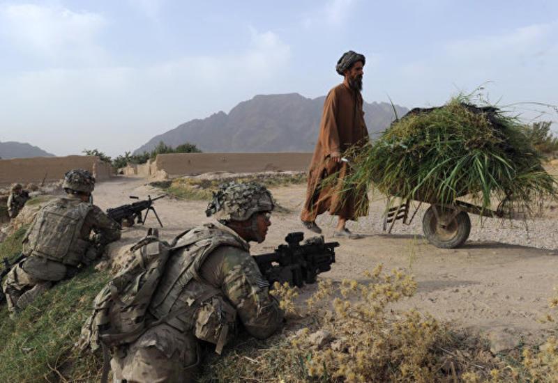 Маккейн заявил, что США проигрывают войну в Афганистане