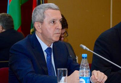 МИД: Азербайджан старается помочь в разрешении палестино-израильского конфликта