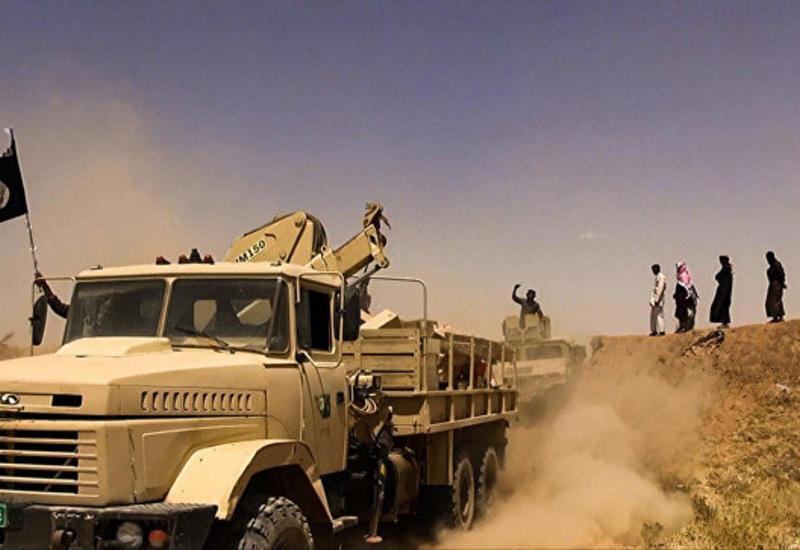 """США рассчитывают, что большинство боевиков """"ИГ"""" останутся в Сирии и Ираке"""