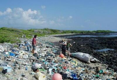 """Пластиковый апокалипсис: 22 фото об ужасающих последствиях нашей глупости <span class=""""color_red"""">- ФОТО</span>"""