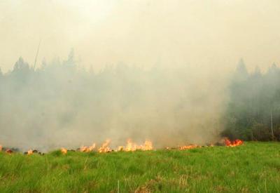 "Якутия охвачена лесными пожарами <span class=""color_red"">- ВИДЕО</span>"