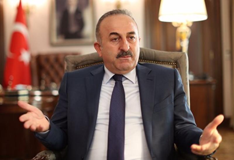 Чавушоглу обвинил главу Amnesty International в Турции