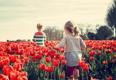 7 признаков сильного характера ребенка