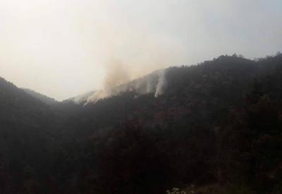 Лесной пожар в Армении захватывает новые территории