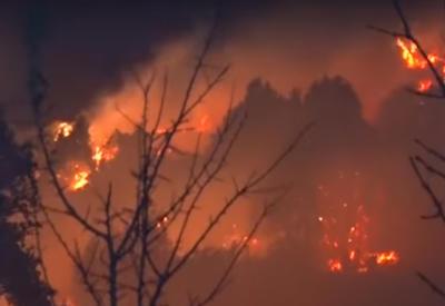 Площадь лесного пожара в Армении за ночь разрослась в два раза