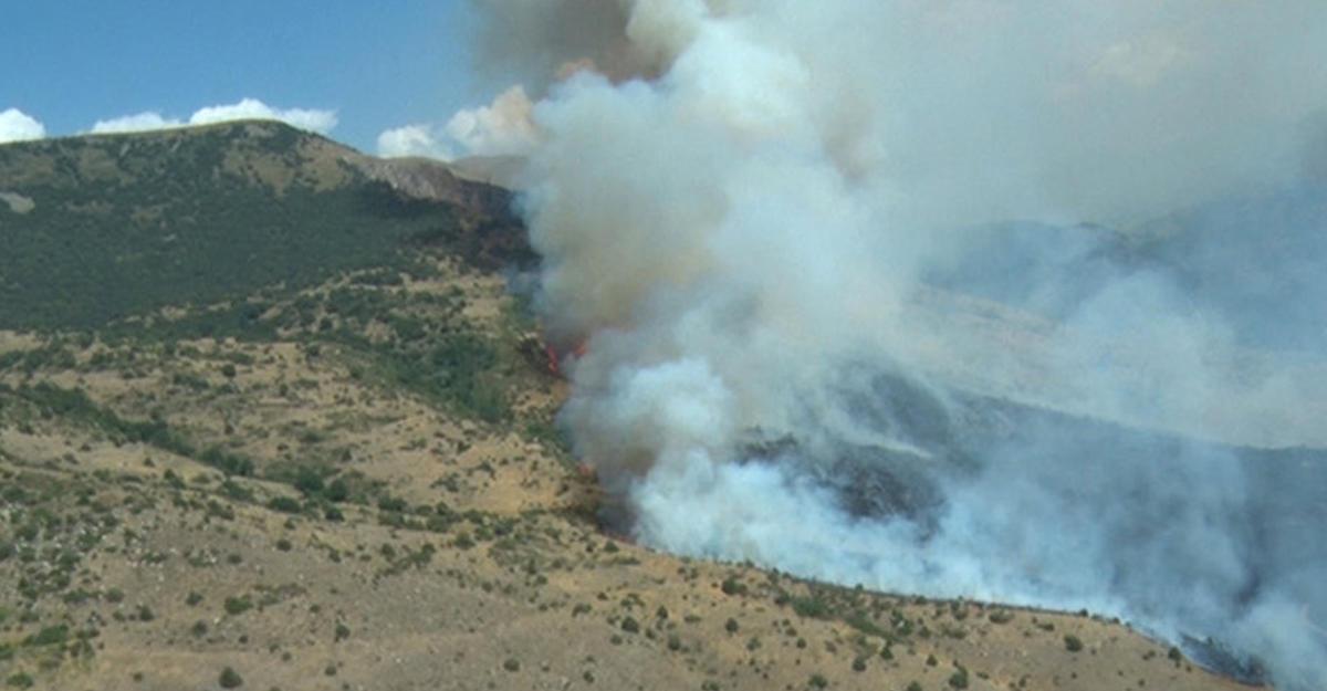 Ереван просит столицуРФ посодействовать спожаром встарейшем армянском заповеднике