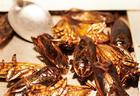 В швейцарских супермаркетах начнут продавать котлеты из насекомых