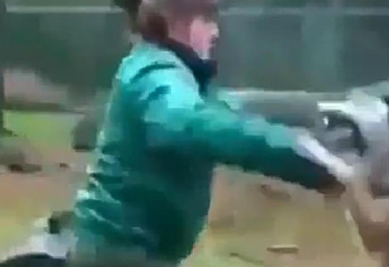 Шокирующая отвага женщины-военной, которая столкнулась лицом к лицу с волком